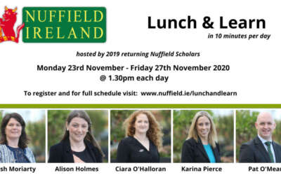 Nuffield Ireland Scholars to host virtual lunchtime series